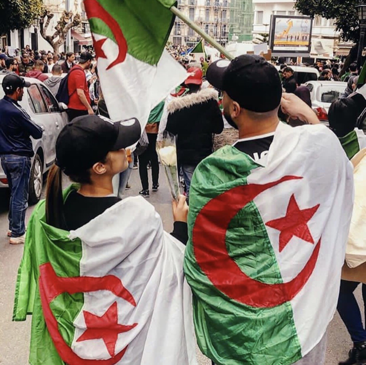 Algeria, article, and battle image