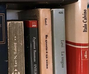 Books, books, and... books, over again.