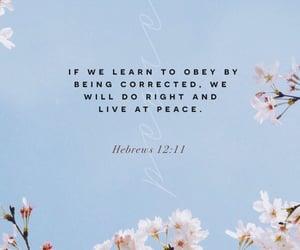 god, bible verse, and hebrews 12:11 image