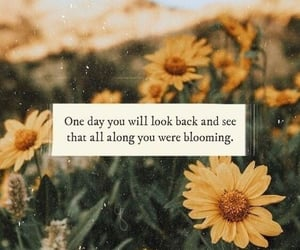 quotes, flowers, and blooming image