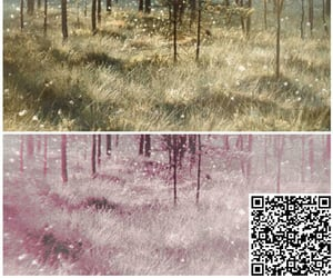 filter, polarr, and qr code image
