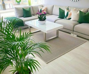 decor, green, and home image