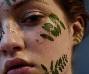 alternative, face, and leaf image