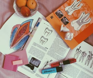 art, study, and book image