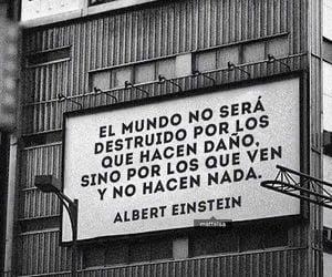 Albert Einstein, citas, and phrases image