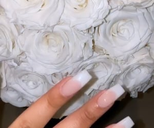 roses and french manicure nails image