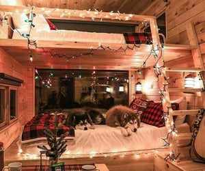 cabins, fairylights, and coolcabins image
