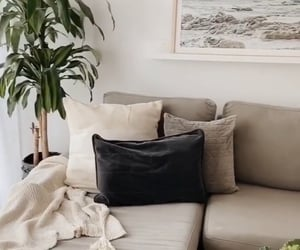 couch, deco, and plants image