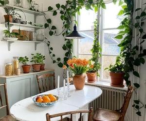 plants, girl, and house image