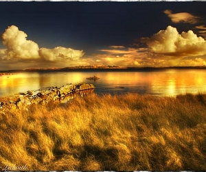 galway, gold, and nature image