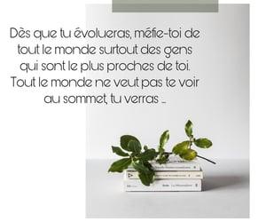 conseil and réflexion image