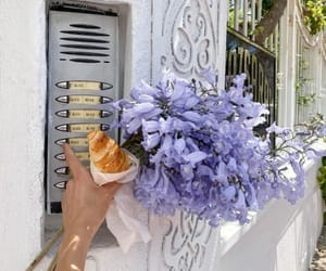 flowers, aesthetic, and lilac image