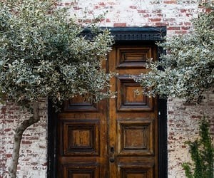 door and fashion image