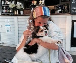 dog, fashion, and food image
