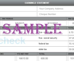 paystub generator, free pay stub generator, and free check stub maker image