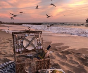beach, picnic, and sunset image