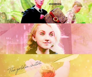 aesthetic, graphic, and order of the phoenix image