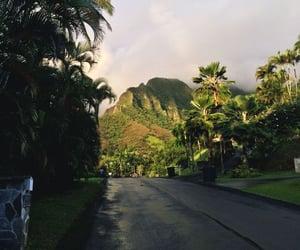 nature, hawaii, and travel image