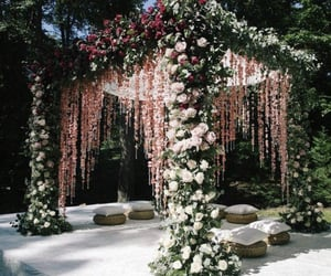 decoration, photography, and pretty image