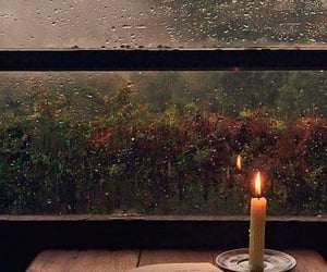 A rainy day and a book... 🍵