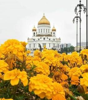 nature, travel, and yellow image