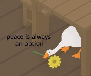 :(, flower, and peace image
