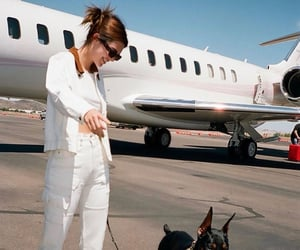 kendall jenner and dog image