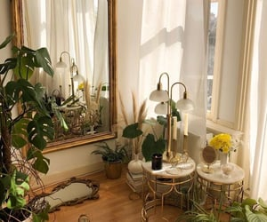 plants, mirror, and home image
