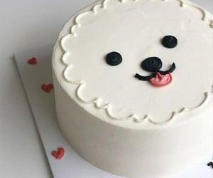 cake, food, and dog image