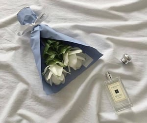aesthetic, flowers, and blue image