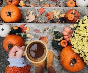 Cosy Autumn Vibes