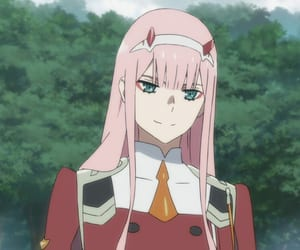 darling in the franxx image