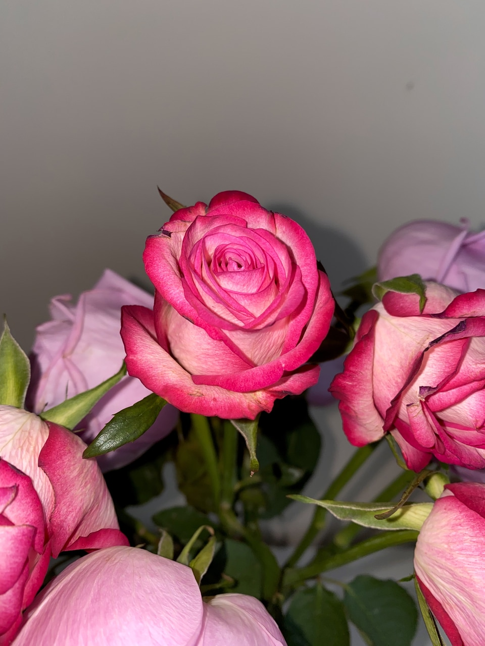 flower, pink, and pretty image