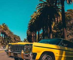 aesthetic, bay area, and california image