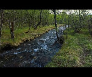 relaxing, river, and spring image