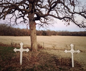 cross, death, and field image