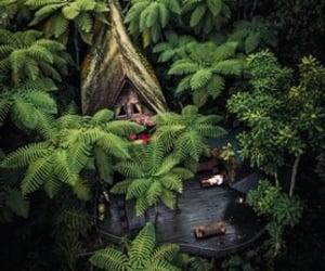 bali, explore, and nature image