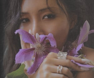 flowers, hair, and jewellery image