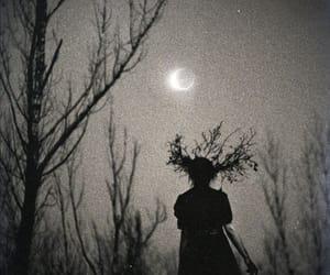Image by loregalafate