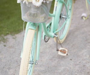 flowers, bicycle, and pastel image