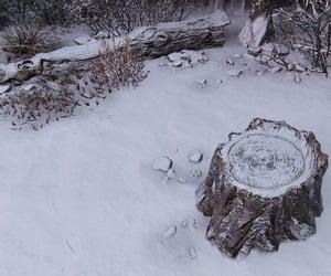nature, snow, and stump image