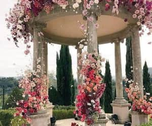 exteriores, flowers, and roses image