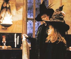Hermione granger•