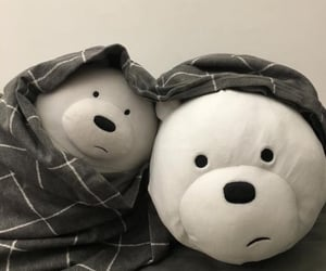 aesthetic, cute, and bear image
