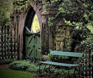 benches, plants, and garden gate image