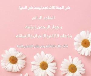 islam, جَنَة, and ﻋﺮﺑﻲ image