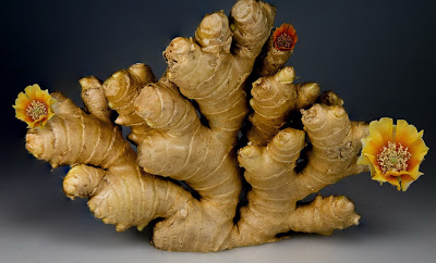 ginger, medicines, and health image