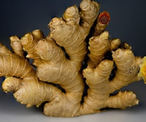 ginger, health, and medicines image
