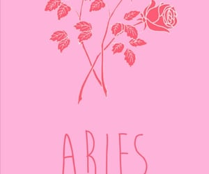 aries, roses, and wallpaper image