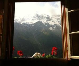 nature, window, and beautiful image